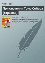 Приключения Тома Сойера (отрывок) фото №1