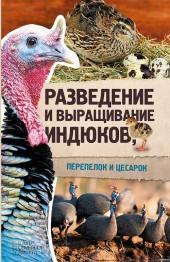 Разведение и выращивание индюков, перепелок и цесарок фото №1