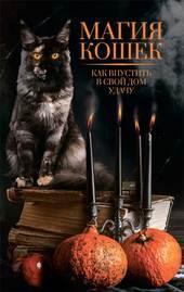 Магия кошек. Как впустить в свой дом удачу фото №1