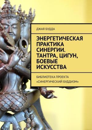 Энергетическая практика синергии. Тантра, цигун, боевые искусства. Библиотекапроекта «Синергический буддизм» фото №1