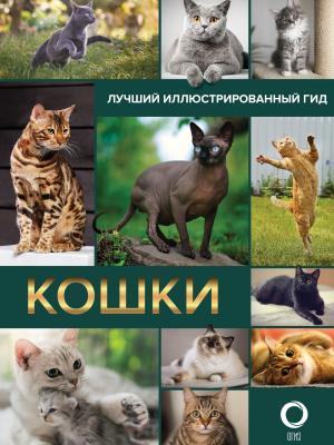 Кошки фото №1