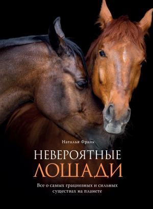 Невероятные лошади. Все о самых грациозных и сильных существах на планете фото №1
