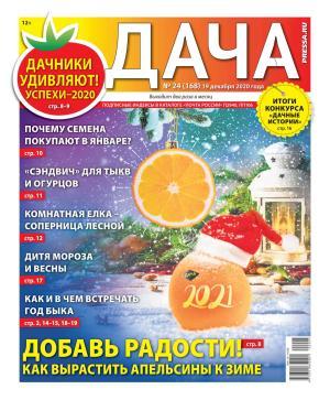 Дача Pressa.ru 24-2020