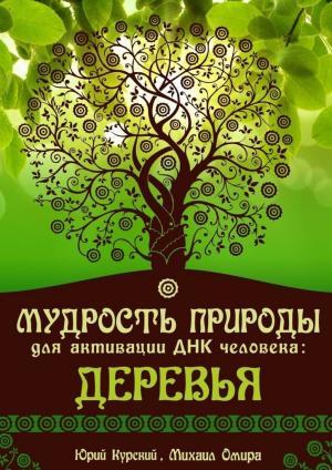 Мудрость Природы для активации ДНК человека: Деревья фото №1