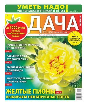 Дача Pressa.ru 11-2021 фото №1