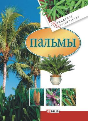 Пальмы фото №1
