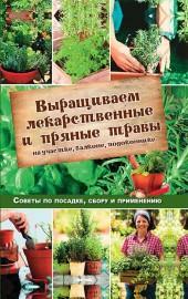 Выращиваем лекарственные и пряные травы фото №1