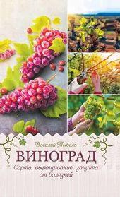 Виноград. Сорта, выращивание, защита от болезней фото №1